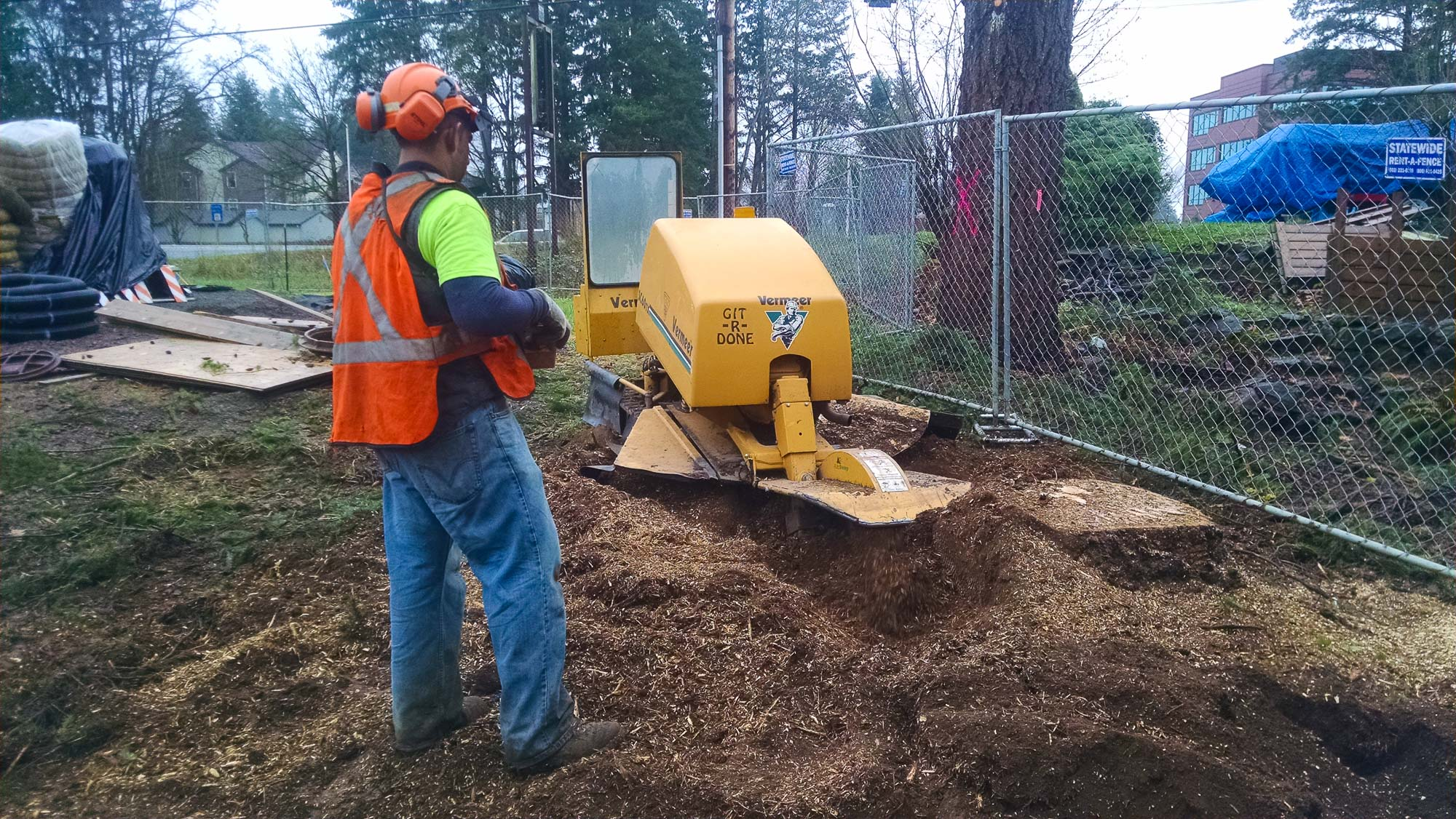 tree-service-removal-pruning-salem-oregon-592